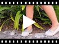 Video from Sabrinas Menina estilo ballet com brilho