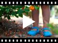 Video from Sapatos Merceditas Tecido com Fivela
